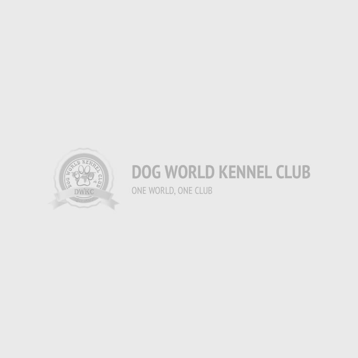 Dog World Kennel Club - Stud Dogs